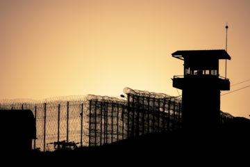 İHD Co-Chair Keskin: UN's WHO should investigate Turkish prisons