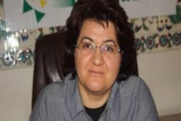 Kurdish politician Emine Ayna released by court