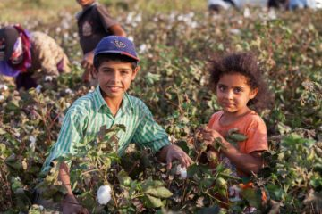 264 child workers die in work places, number of child labor increases 100,000 in 4 years in Turkey