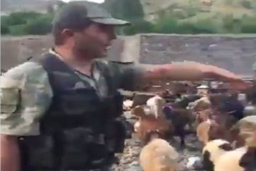Video exposes Turkish soldiers seizing hundreds of sheeps belonging to Kurdish villagers in SE Turkey