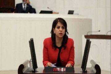 Turkish government detains pro-Kurdish HDP deputy Sibel Yiğitalp
