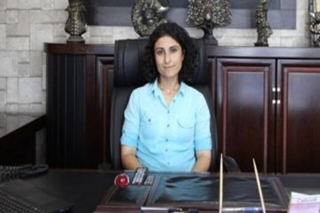 Turkish gov't detains pro-Kurdish DBP's Bağcı, co-mayor of Van's Özalp district