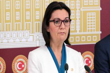 CHP report reveals the stigmata of degeneracy among Turkish society